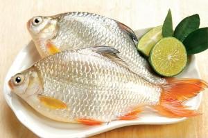 Thực phẩm hàng đầu ngăn ngừa nguy cơ loãng xương